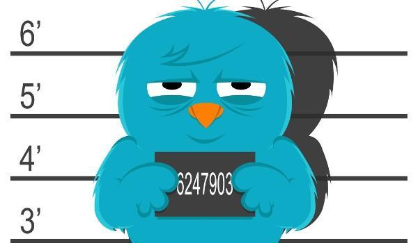 Özgür Kuş Artık Daha da Özgür!